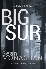 big sur cover sm